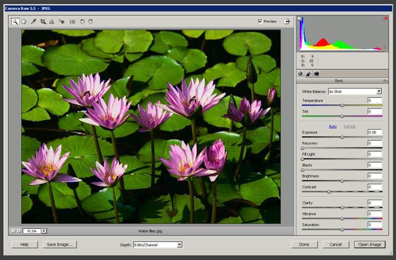 Adobe Camera Raw dialog